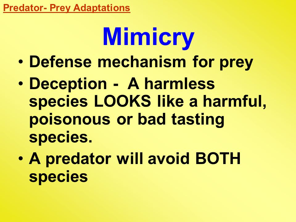 Mimicry Defense mechanism for prey