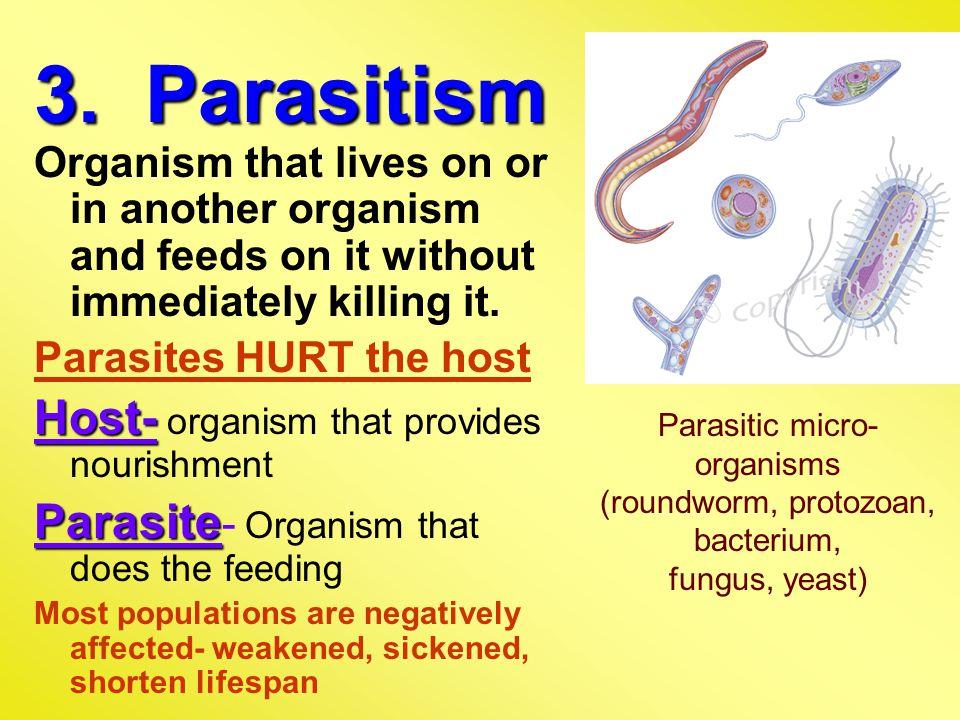 3. Parasitism Host- organism that provides nourishment