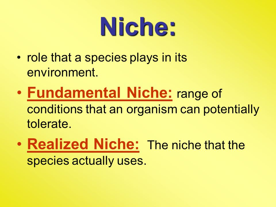Niche: role that a species plays in its environment. Fundamental Niche: range of conditions that an organism can potentially tolerate.