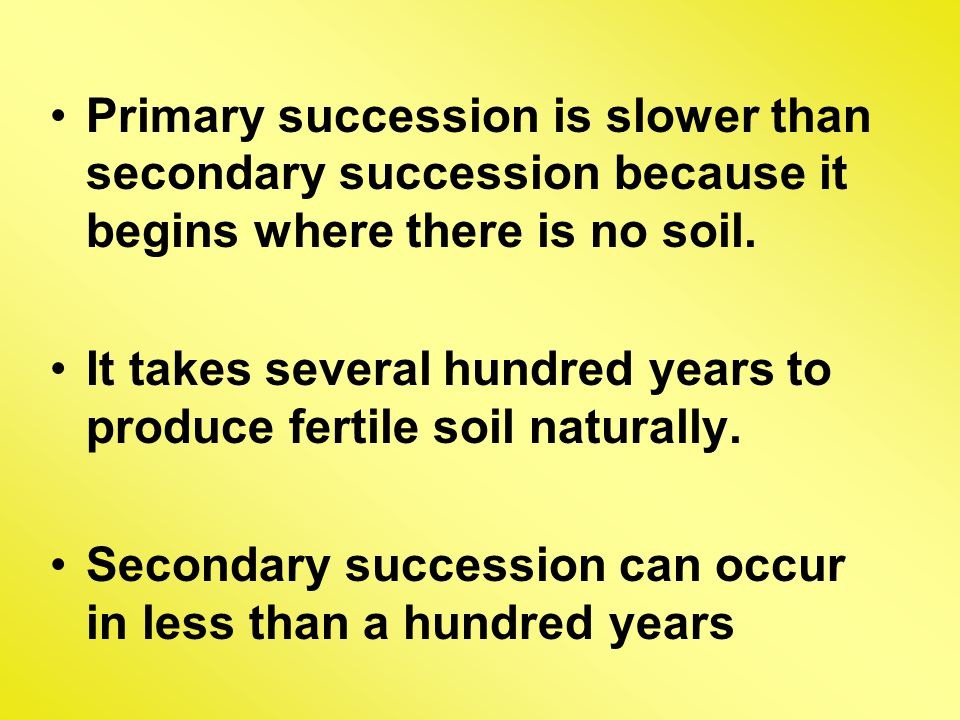 Primary succession is slower than secondary succession because it begins where there is no soil.