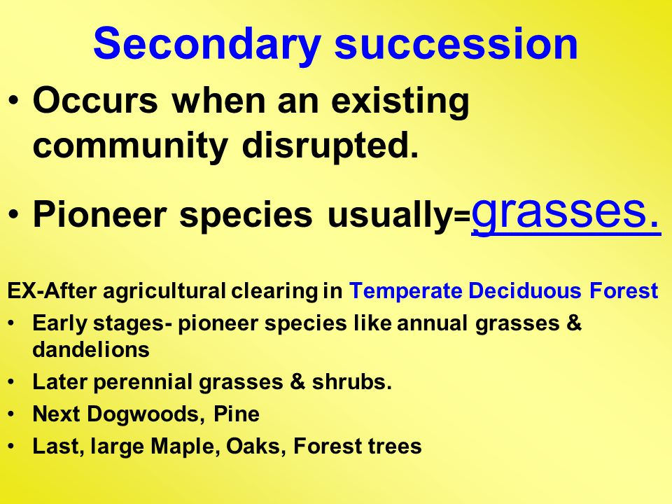 Secondary succession Occurs when an existing community disrupted.