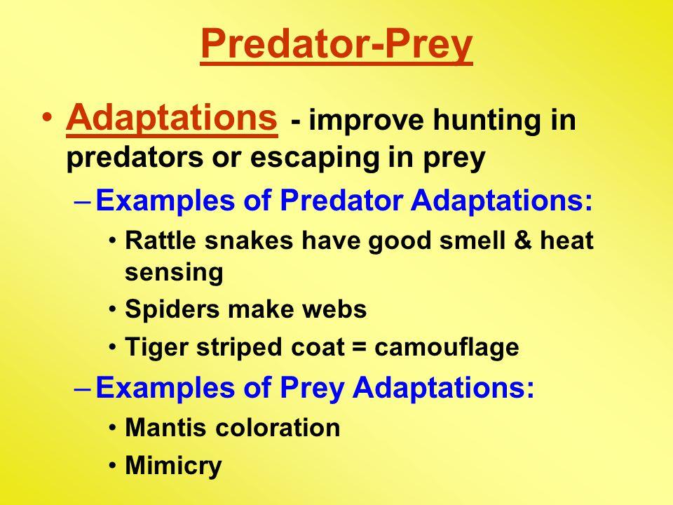 Predator-Prey Adaptations - improve hunting in predators or escaping in prey. Examples of Predator Adaptations: