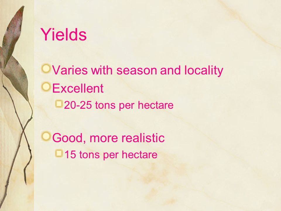 Yields Varies with season and locality Excellent Good, more realistic
