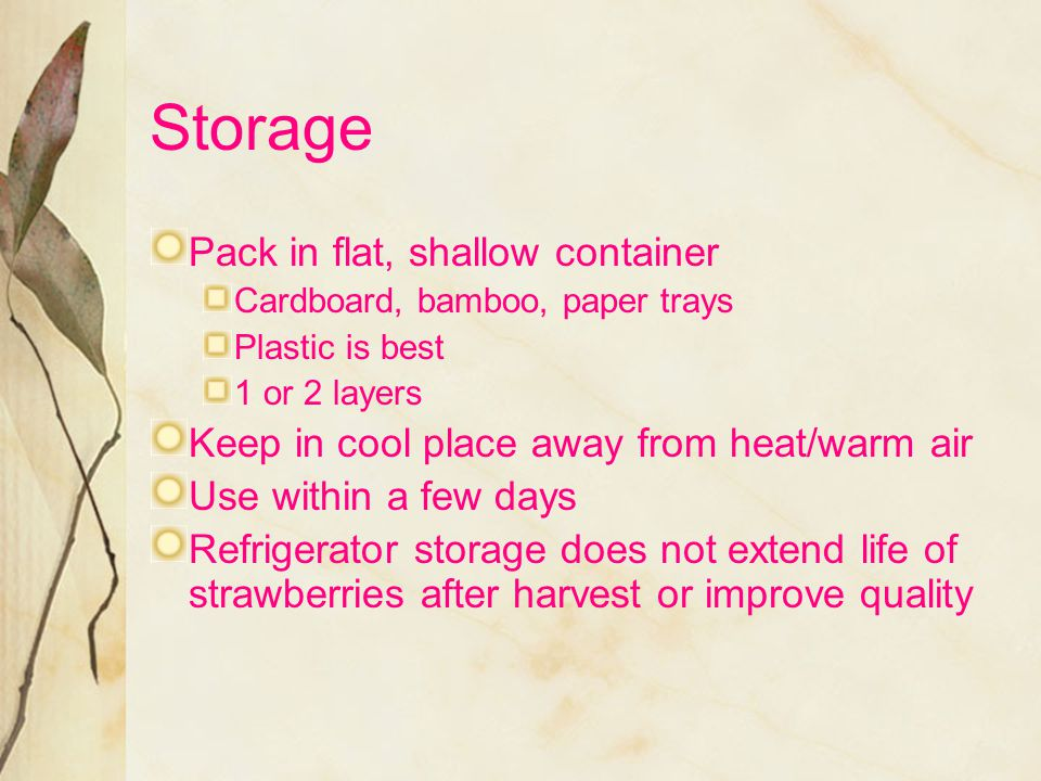 Storage Pack in flat, shallow container