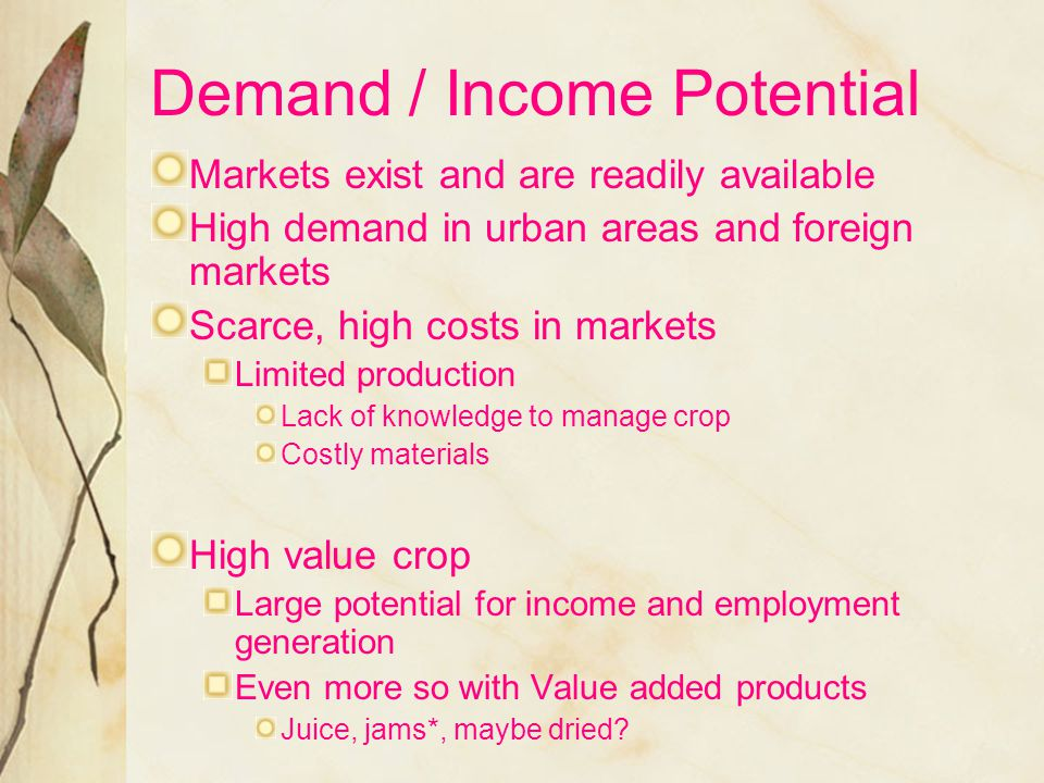 Demand / Income Potential