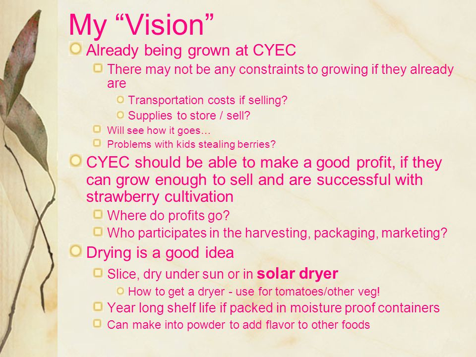 My Vision Already being grown at CYEC