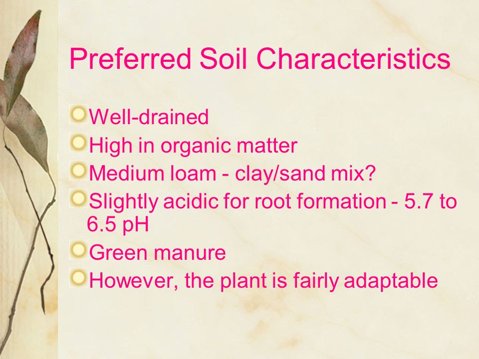 Preferred Soil Characteristics