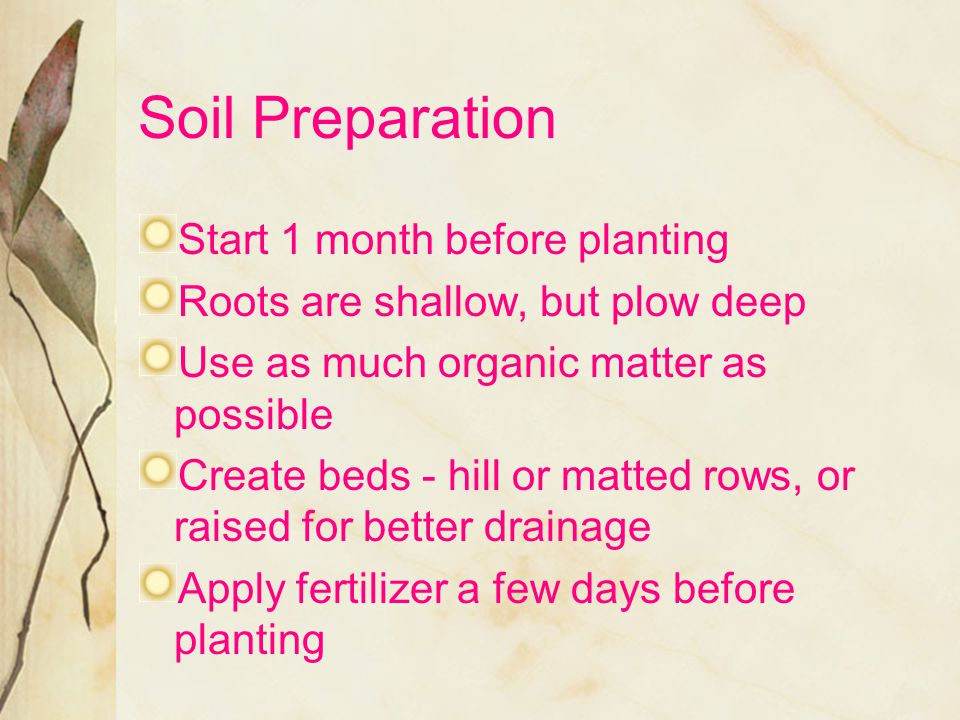 Soil Preparation Start 1 month before planting