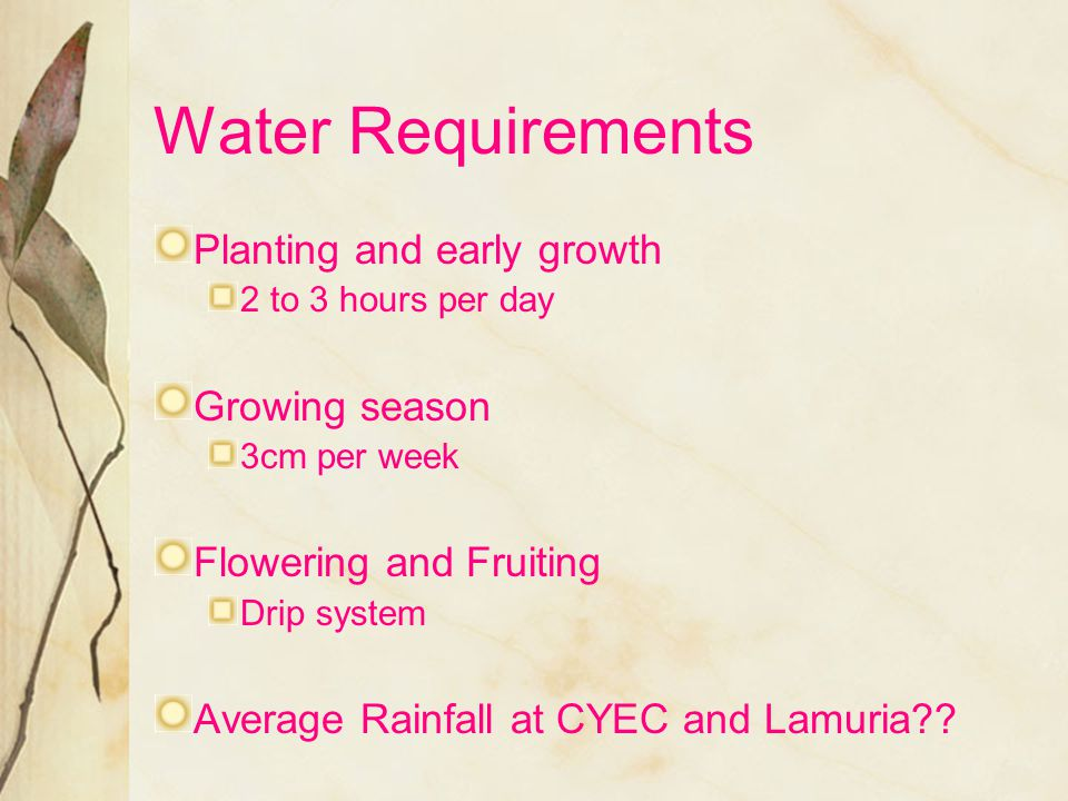Water Requirements Planting and early growth Growing season