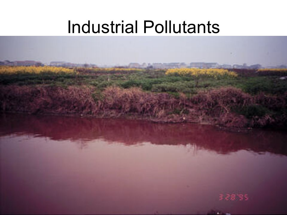 Industrial Pollutants