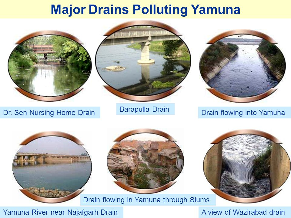 Major Drains Polluting Yamuna