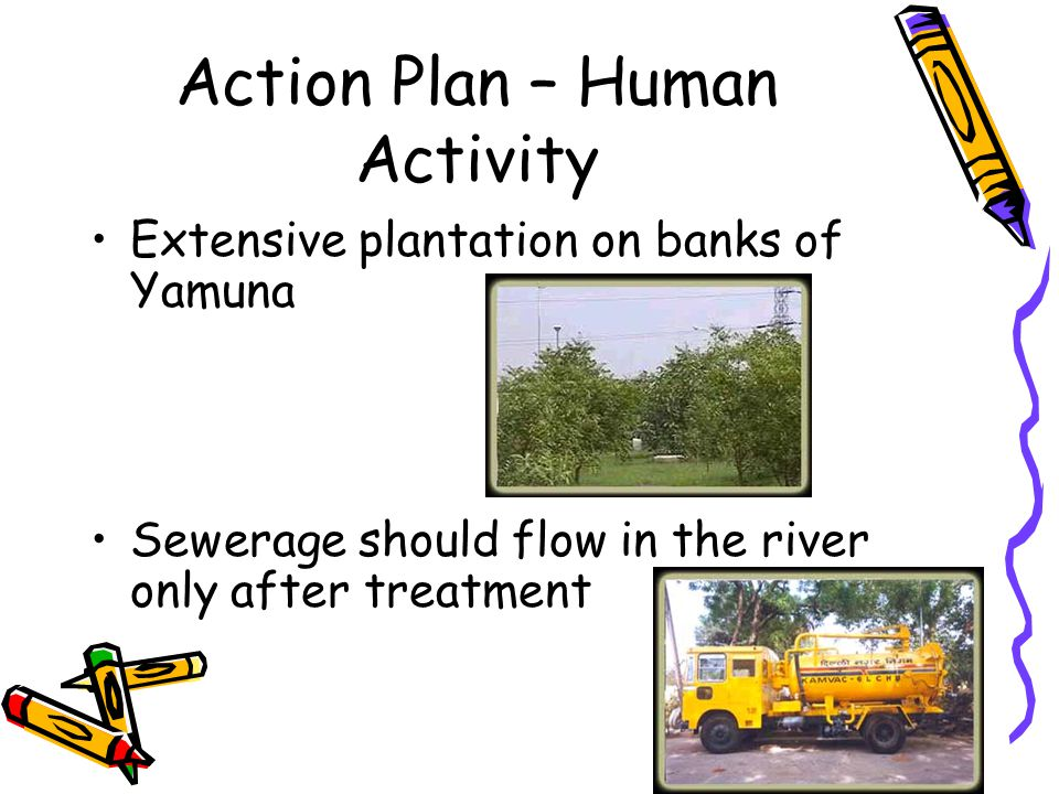 Action Plan – Human Activity