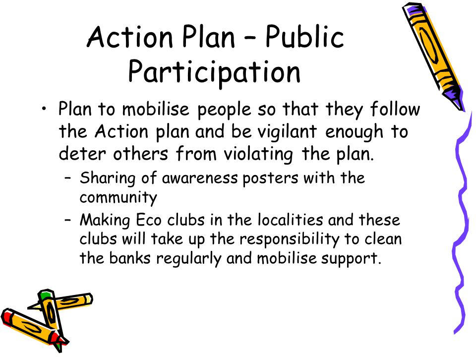 Action Plan – Public Participation