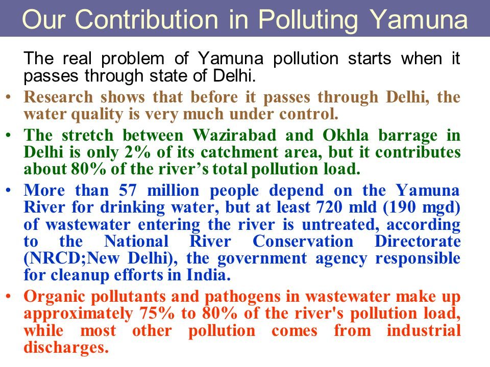 Our Contribution in Polluting Yamuna