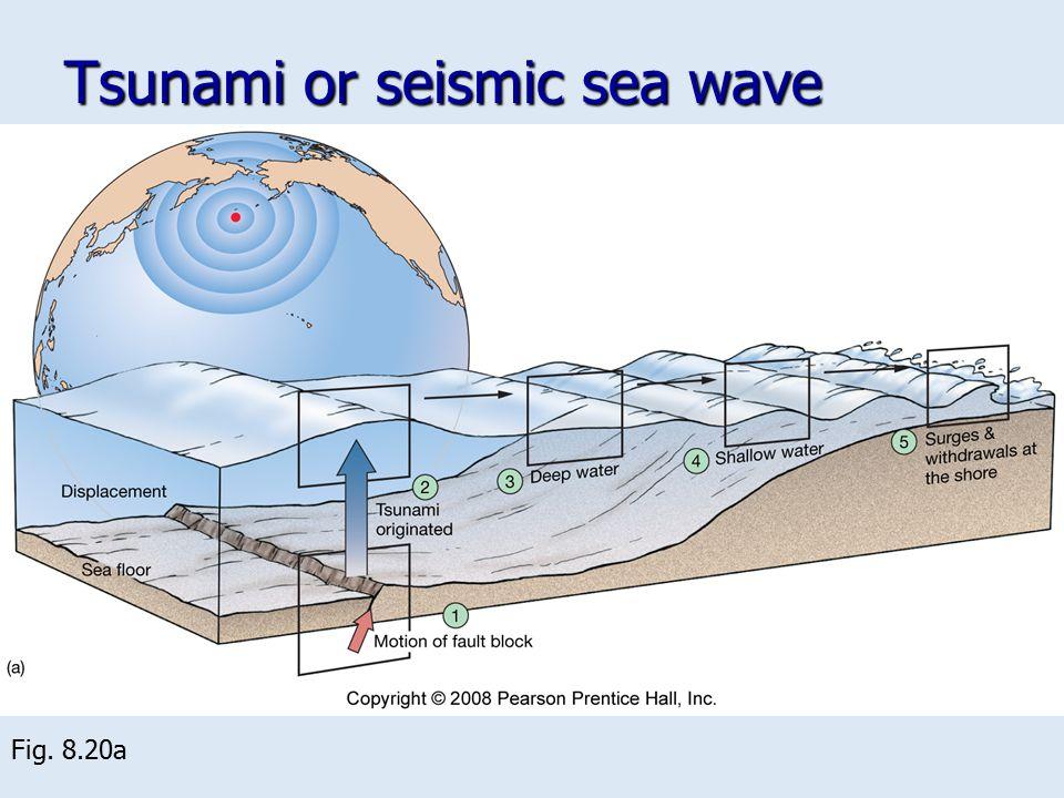 Tsunami or seismic sea wave
