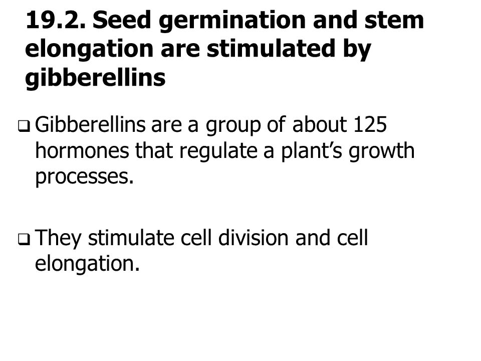 19.2. Seed germination and stem elongation are stimulated by gibberellins