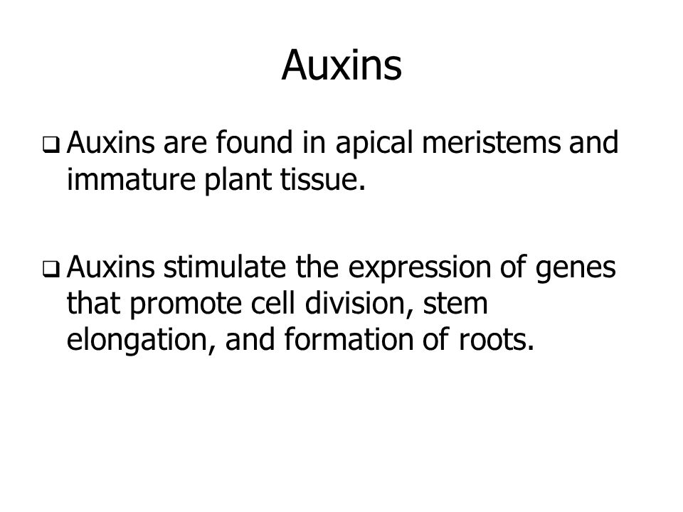 Auxins Auxins are found in apical meristems and immature plant tissue.