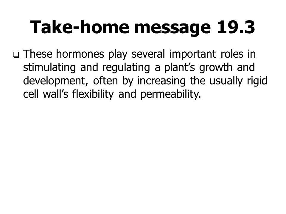 Take-home message 19.3