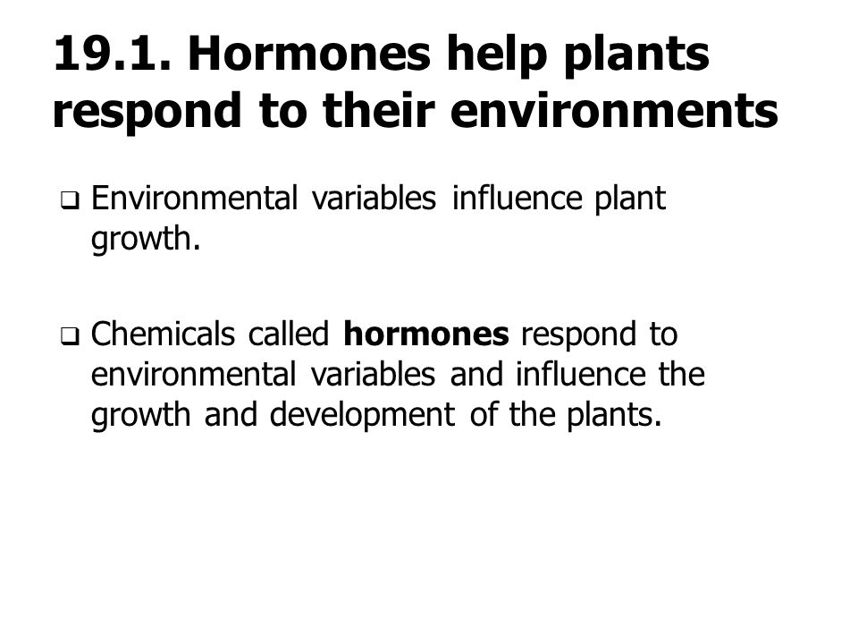 19.1. Hormones help plants respond to their environments