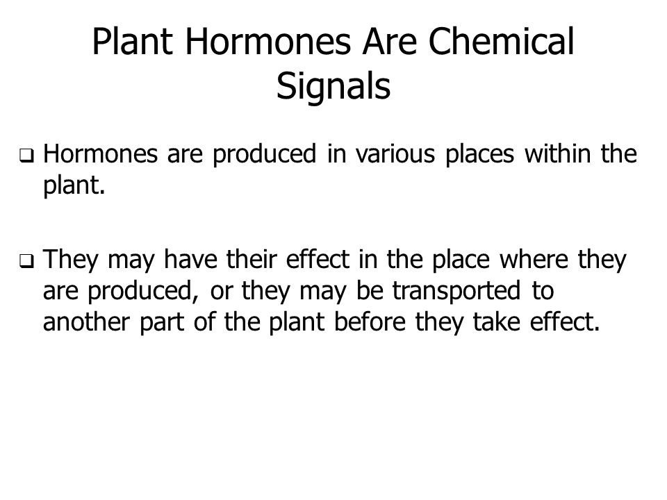 Plant Hormones Are Chemical Signals