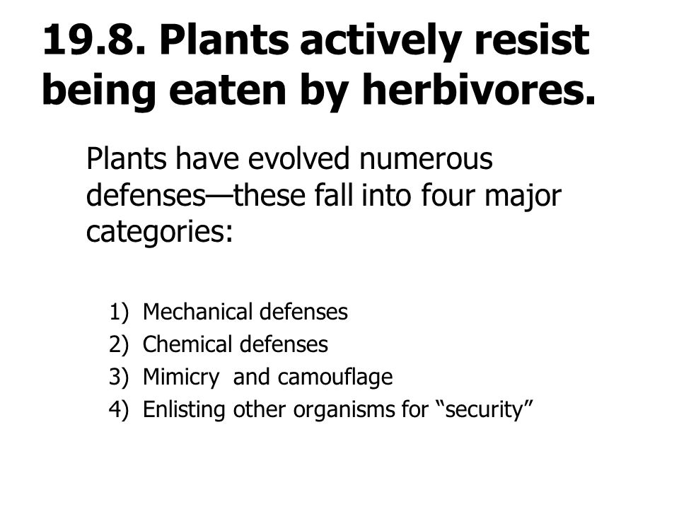 19.8. Plants actively resist being eaten by herbivores.