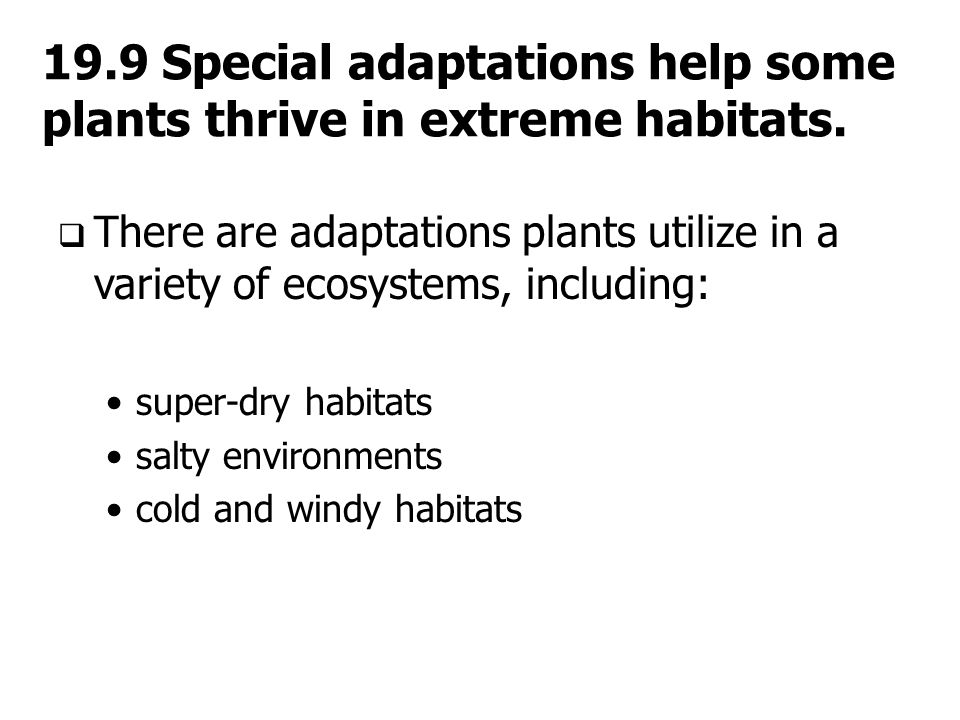 19.9 Special adaptations help some plants thrive in extreme habitats.