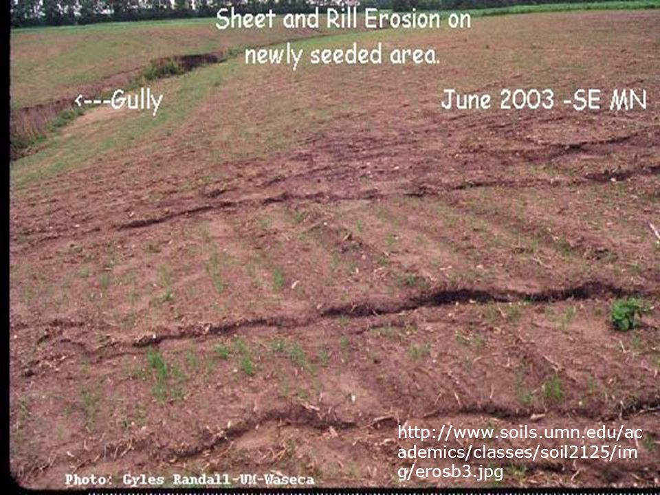 http://www.soils.umn.edu/academics/classes/soil2125/img/erosb3.jpg