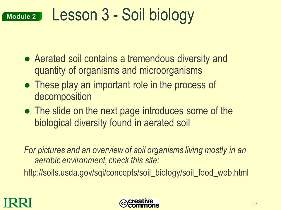 Lesson 3 - Soil biology Aerated soil contains a tremendous diversity and quantity of organisms and microorganisms.