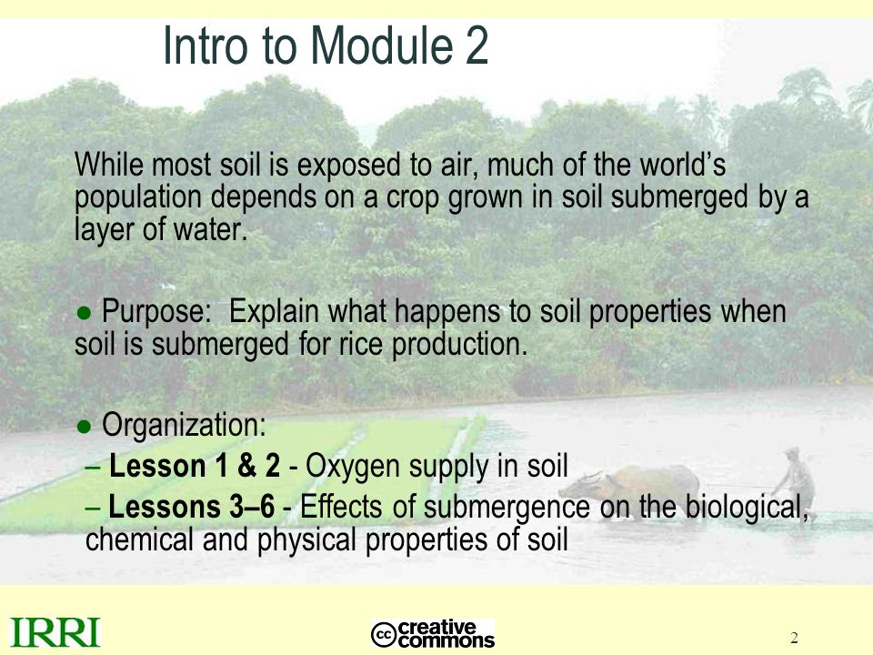 Intro to Module 2 While most soil is exposed to air, much of the world's population depends on a crop grown in soil submerged by a layer of water.