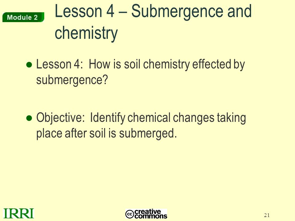 Lesson 4 – Submergence and chemistry