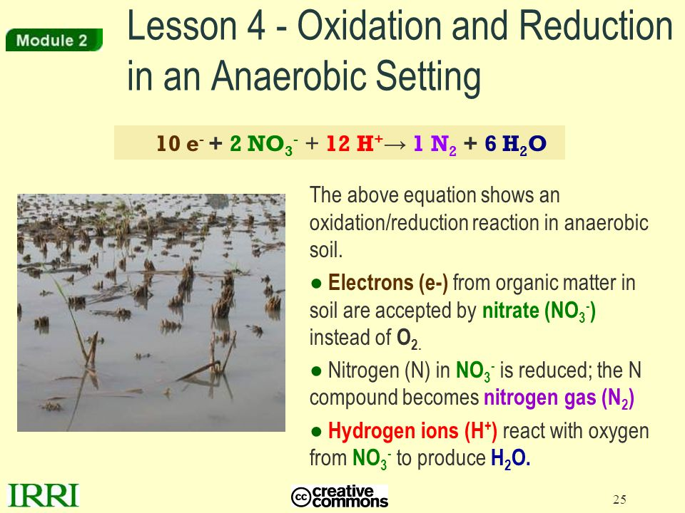 Lesson 4 - Oxidation and Reduction in an Anaerobic Setting