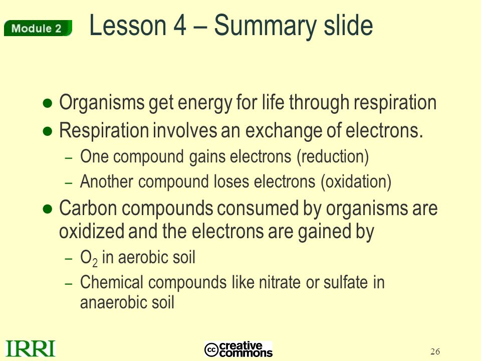 Lesson 4 – Summary slide Organisms get energy for life through respiration. Respiration involves an exchange of electrons.