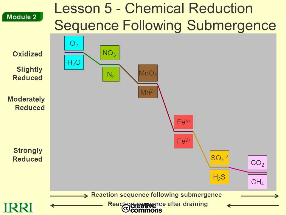 Lesson 5 - Chemical Reduction Sequence Following Submergence