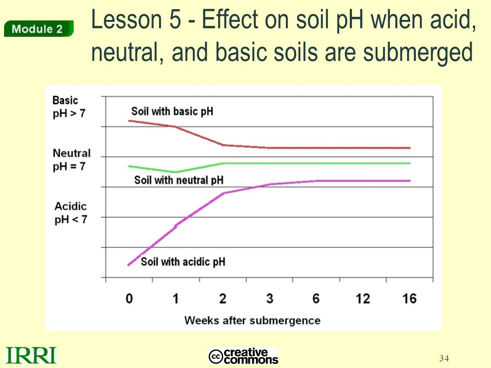 Lesson 5 - Effect on soil pH when acid, neutral, and basic soils are submerged