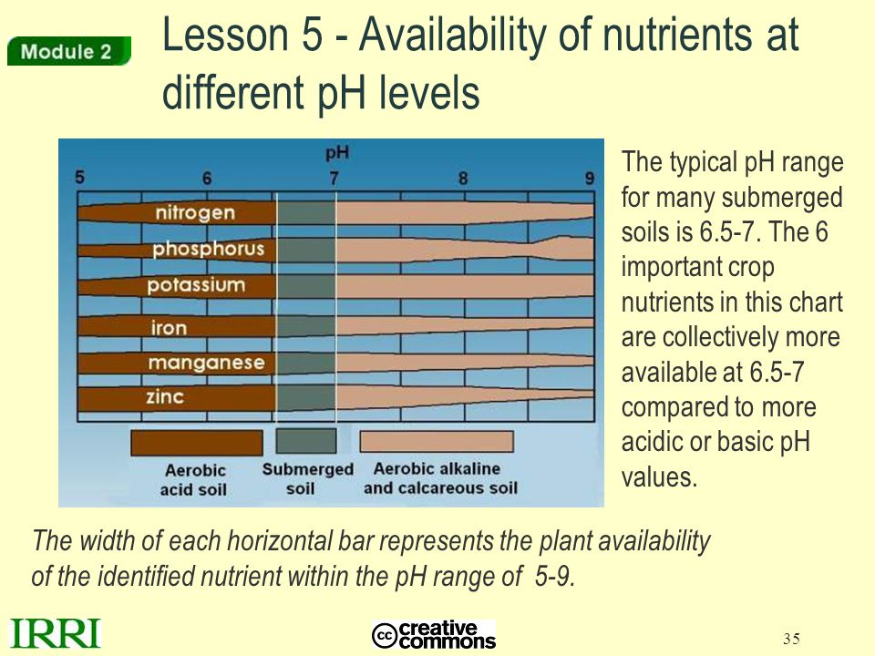 Lesson 5 - Availability of nutrients at different pH levels