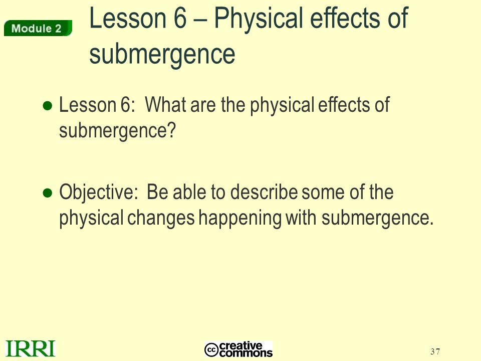 Lesson 6 – Physical effects of submergence