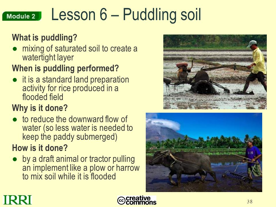 Lesson 6 – Puddling soil What is puddling