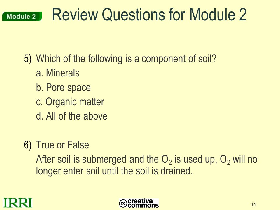 Review Questions for Module 2