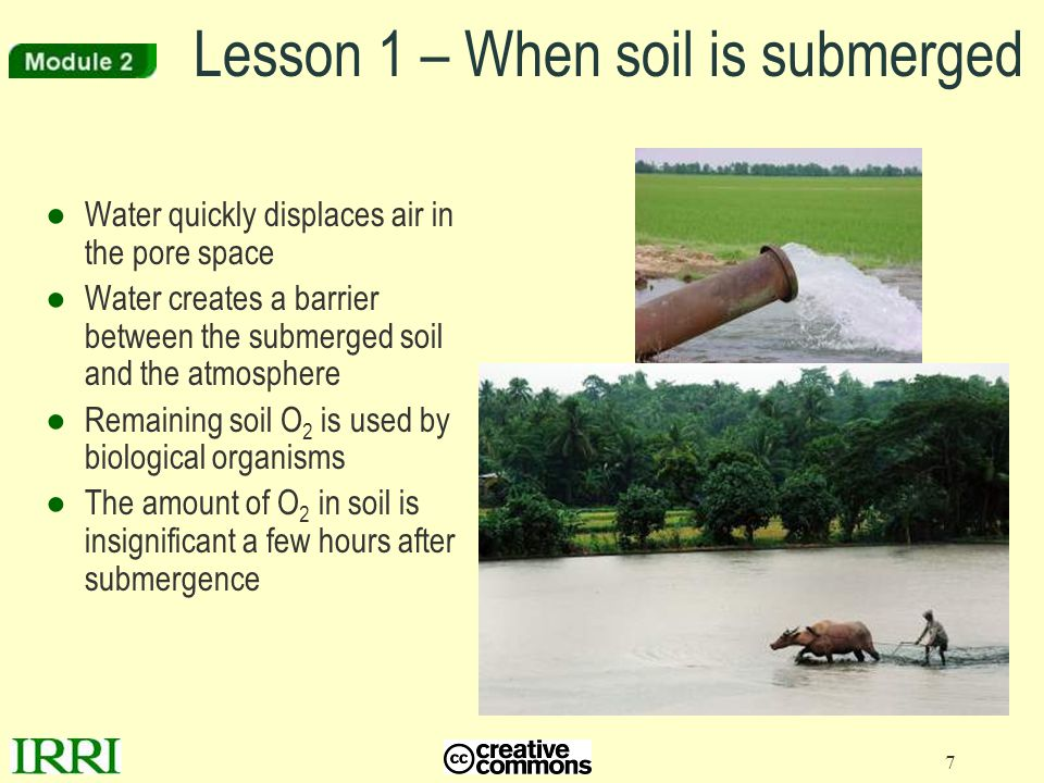 Lesson 1 – When soil is submerged