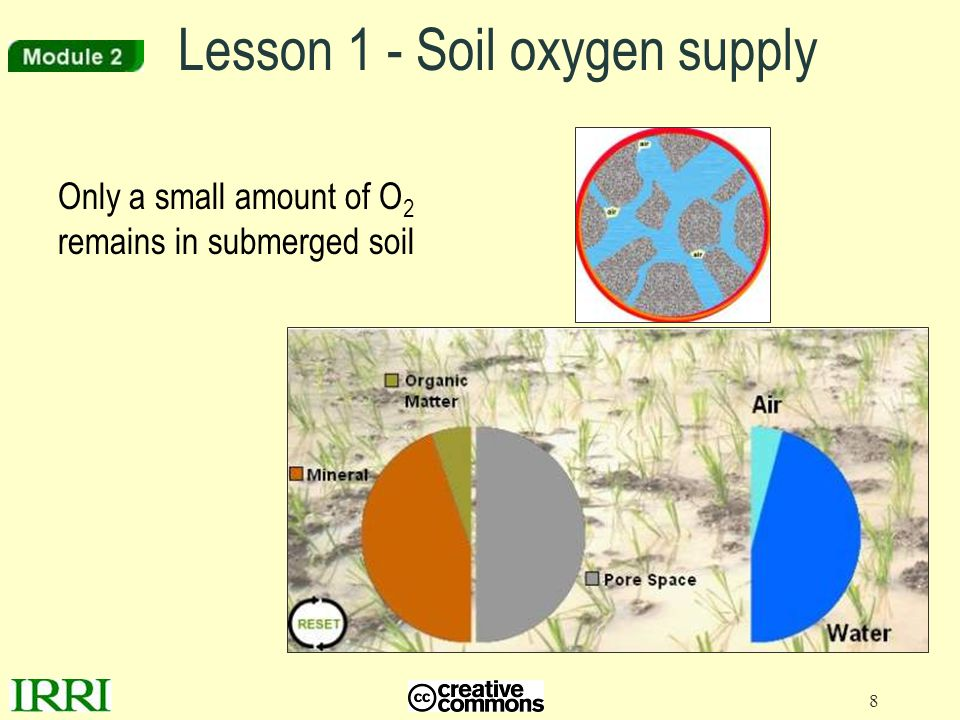 Lesson 1 - Soil oxygen supply
