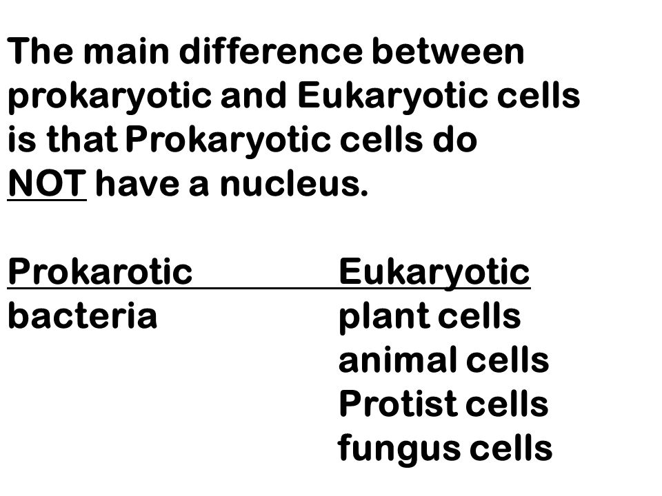 The main difference between prokaryotic and Eukaryotic cells is that Prokaryotic cells do NOT have a nucleus.