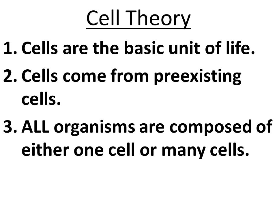 Cell Theory Cells are the basic unit of life.