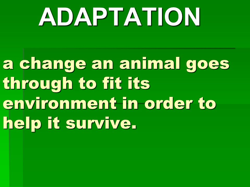 ADAPTATION a change an animal goes through to fit its environment in order to help it survive.