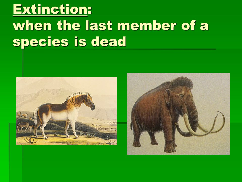 Extinction: when the last member of a species is dead