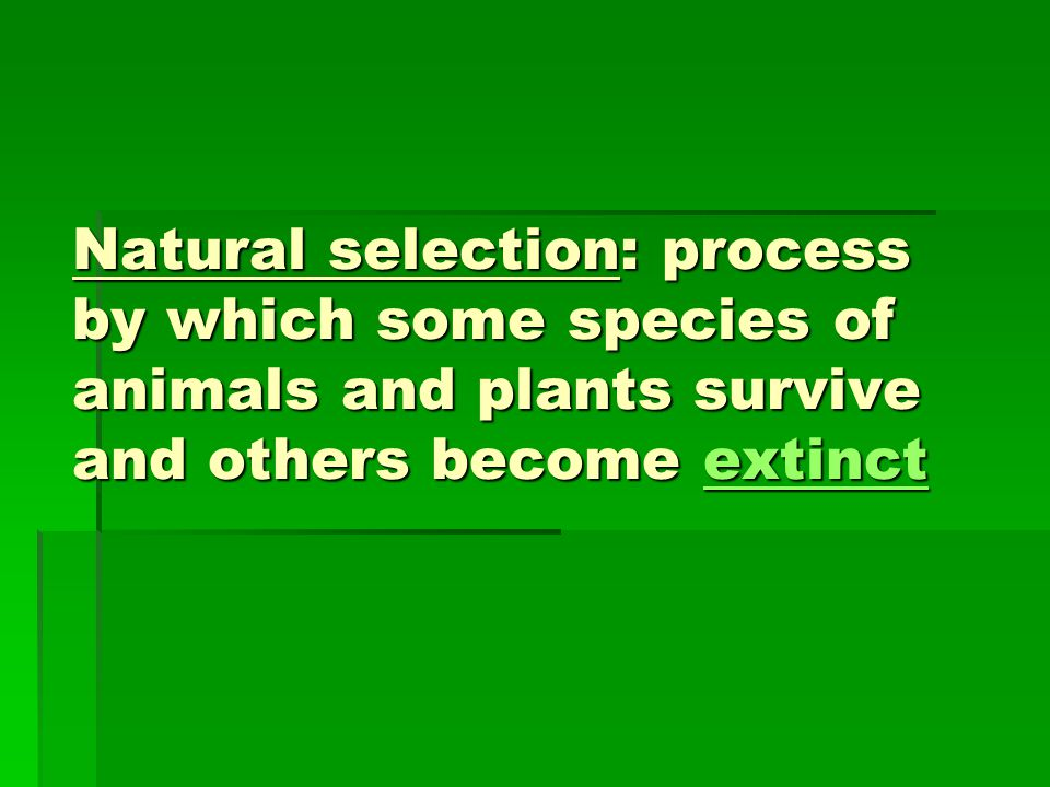 Natural selection: process by which some species of animals and plants survive and others become extinct