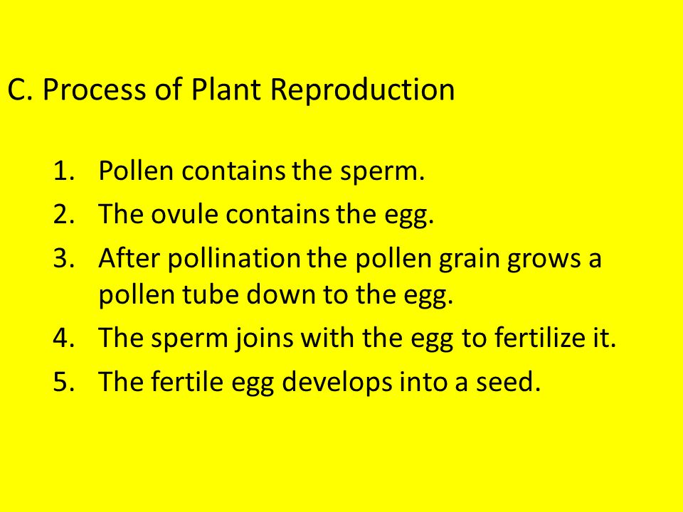 C. Process of Plant Reproduction
