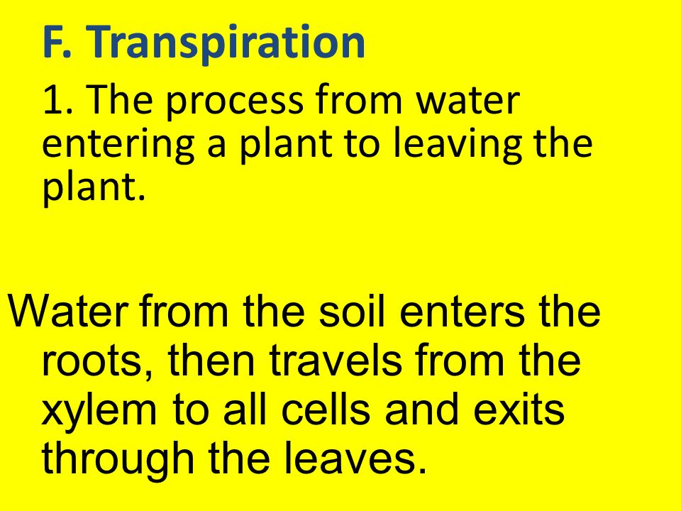 1. The process from water entering a plant to leaving the plant.