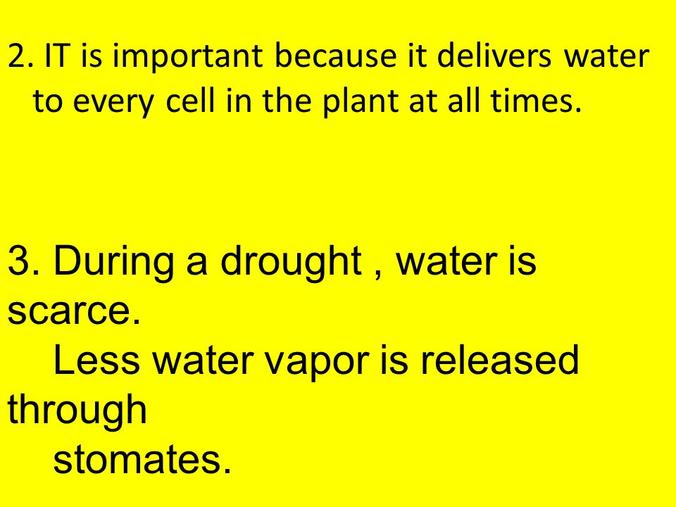 3. During a drought , water is scarce.