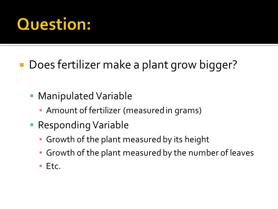 Question: Does fertilizer make a plant grow bigger