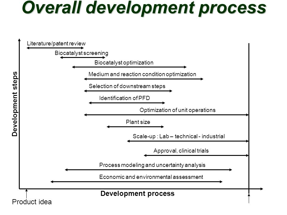 Overall development process
